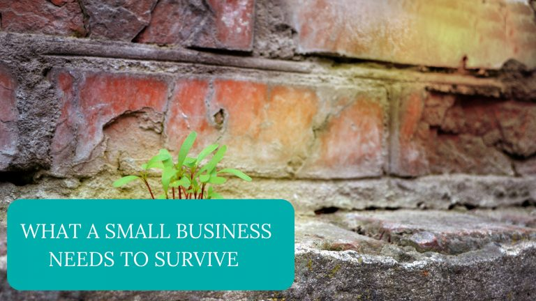 What A Small Business Needs To Survive